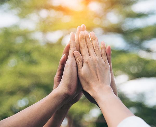 galatea-terapias-programas-mindfulness-empresas
